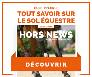 guide-pratique-sol-equestre